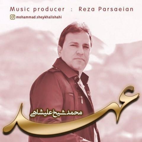 دانلود ترانه جدید محمد شیخ علیشاهى عهد