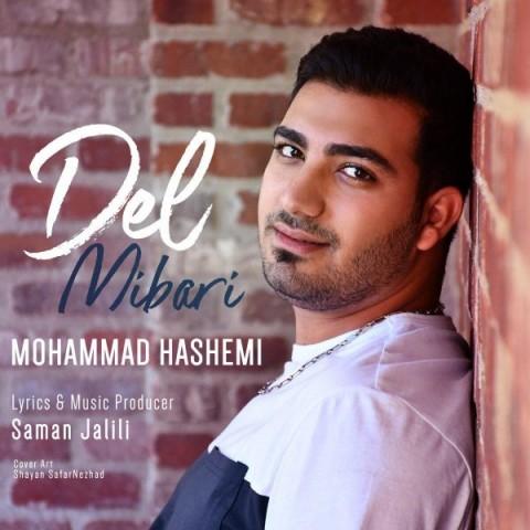 دانلود ترانه جدید محمد هاشمی دل میبری