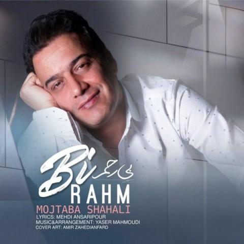 دانلود ترانه جدید مجتبی شاه علی بی رحم