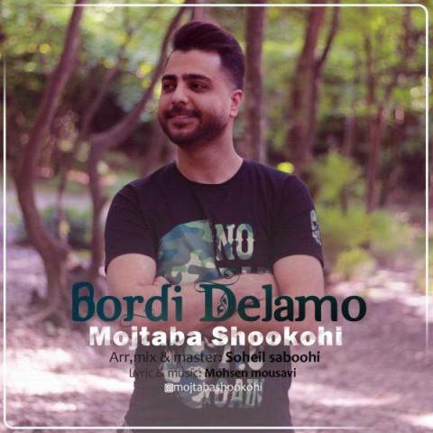 دانلود ترانه جدید مجتبی شکوهی بردی دلمو