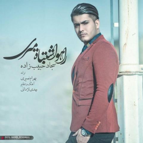 دانلود ترانه جدید سجاد حبیب زاده راهو اشتباه میری