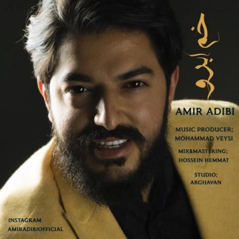 دانلود ترانه جدید امیر ادیبی خم ابرو