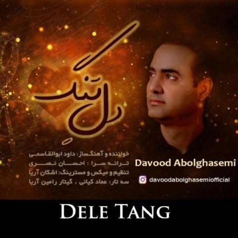 دانلود ترانه جدید داوود ابوالقاسمی دل تنگ