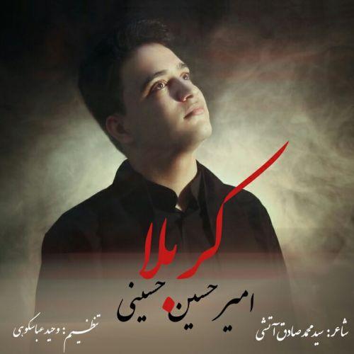 دانلود ترانه جدید امیر حسین حسینی کربلا