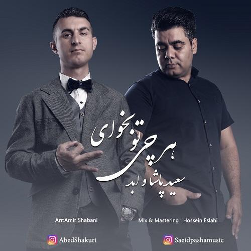 دانلود ترانه جدید سعید پاشا و ابد هر چی تو بخوای