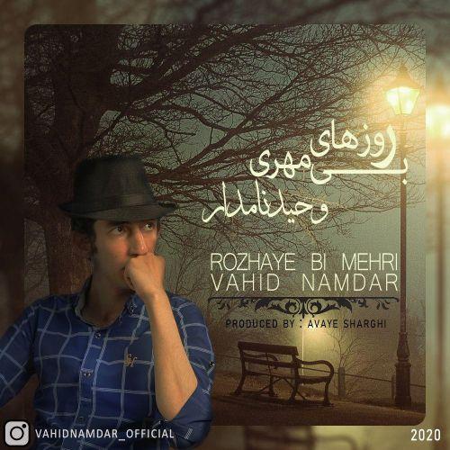 دانلود ترانه جدید وحید نامدار روزهای بی مهری