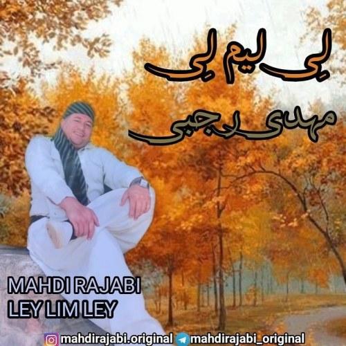 دانلود ترانه جدید مهدی رجبی لی لیم لی