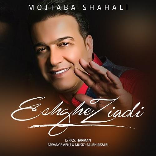 دانلود ترانه جدید مجتبی شاه علی عشق زیادی