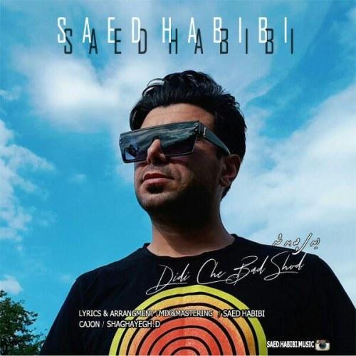 دانلود ترانه جدید ساعد حبیبی دیدی چه بد شد