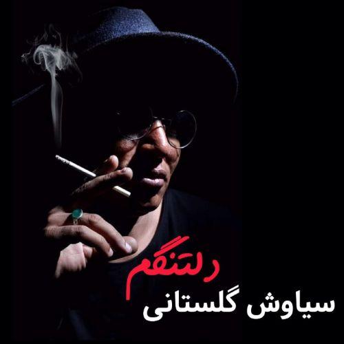 دانلود ترانه جدید سیاوش گلستانی دلتنگم