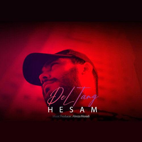 دانلود ترانه جدید حسام دلتنگ