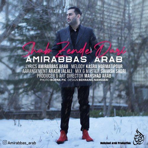 دانلود ترانه جدید امیرعباس عرب شب زنده داری