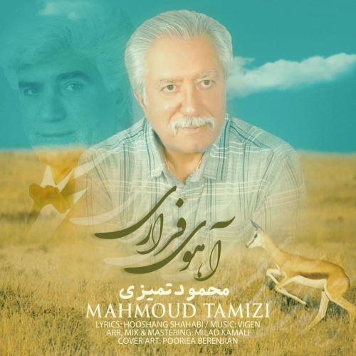 دانلود ترانه جدید محمود تمیزی آهوی فراری