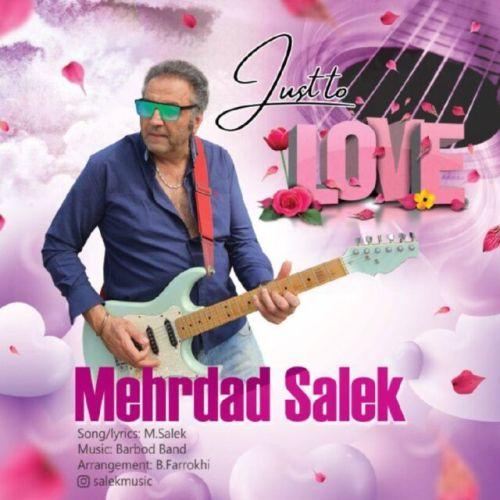 دانلود ترانه جدید مهرداد سالک فقط عشق