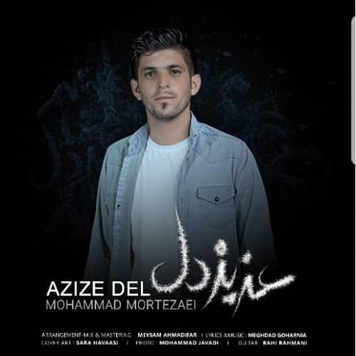 دانلود ترانه جدید محمد مرتضایی عزیز دل