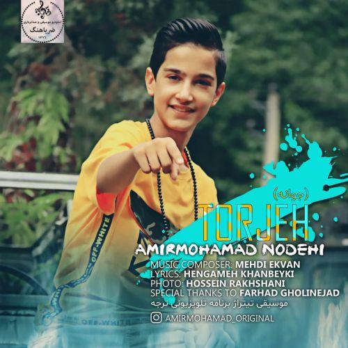 دانلود ترانه جدید امیرمحمد نودهی جوانه